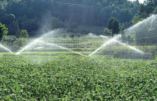 灌溉的五大原则
